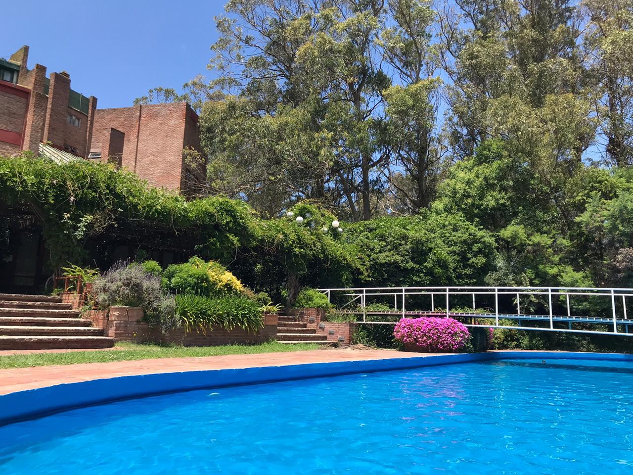 Pileta Exterior y Vista al bosque - Hotel Del Bosque en Pinamar